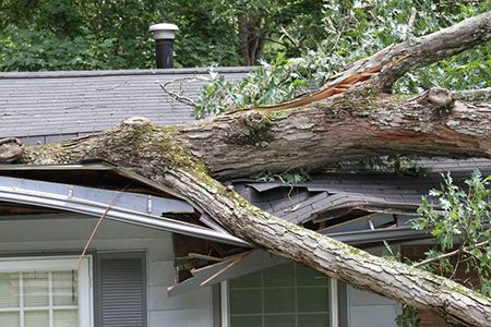 How Homeowners Insurance Covers Your Roof